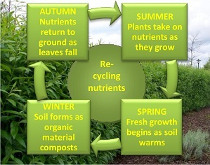 Re-cycling nutrients